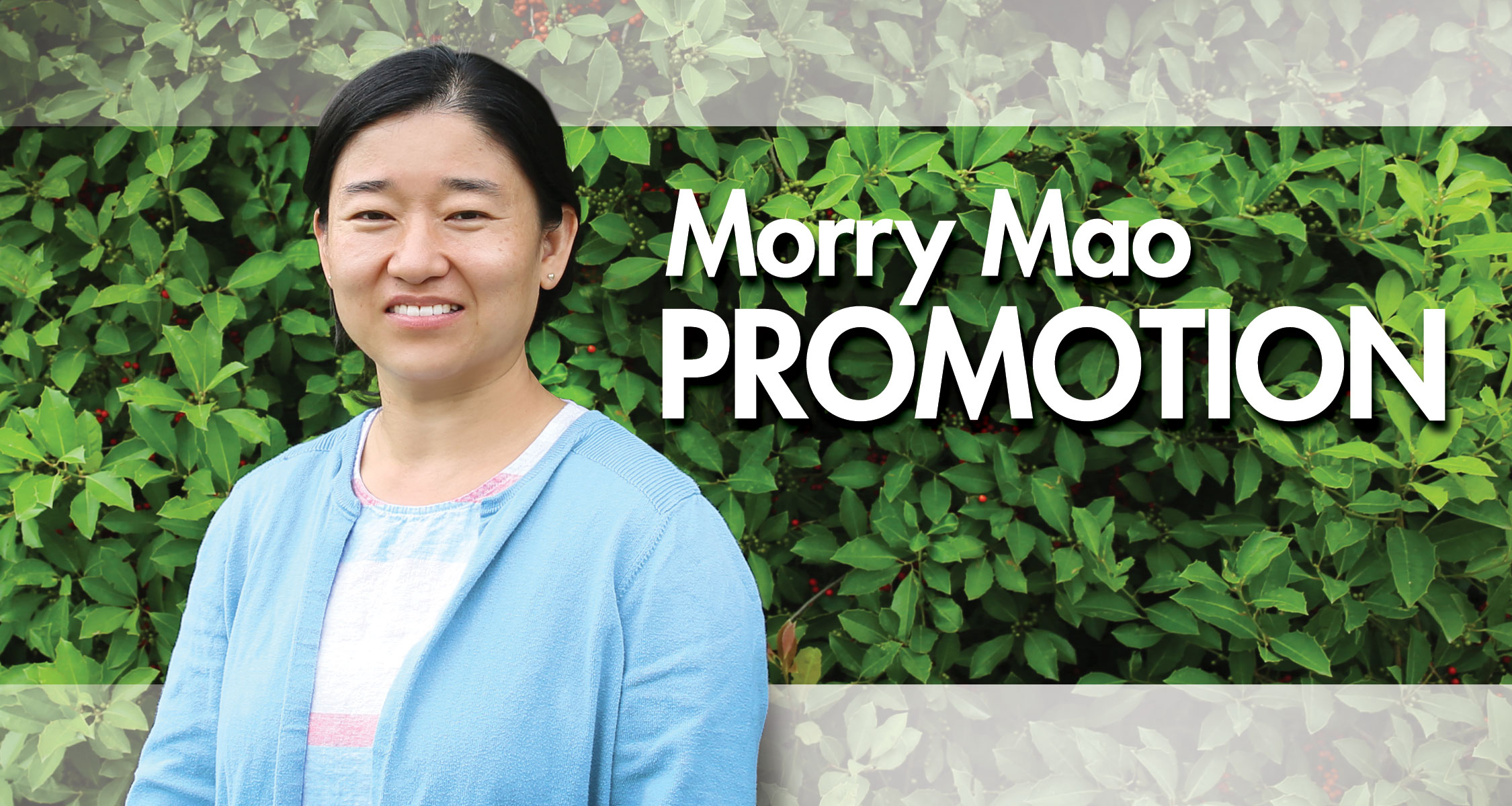 VP of Finance Morry Mao
